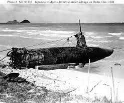 HA-19 on Waimanalo Beach